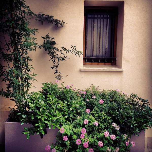 Patio a Treviso